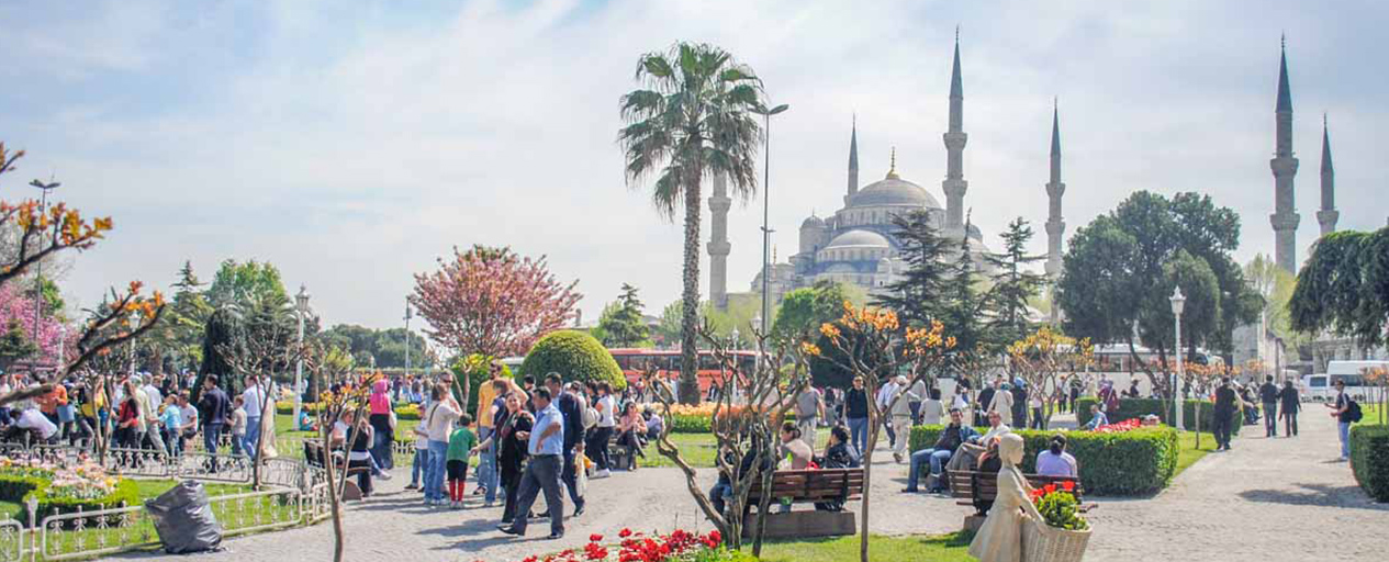 Istanbul: A 3 Day Highlights Tour of the Historic City  Backstreet Nomad
